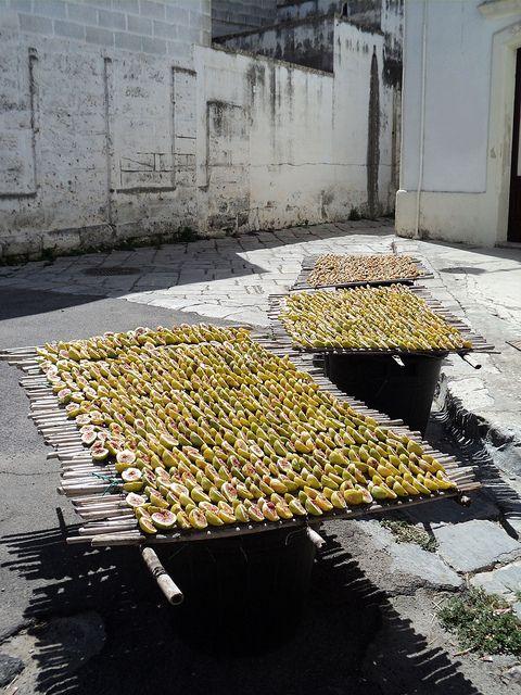 Salento: Drying figs Fichi secchi, province of Brindisi Puglia