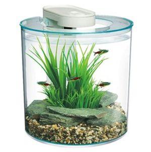 25 best ideas about nano aquarium on pinterest betta tank betta aquarium and aquarium set - Nano aquarium deko ...