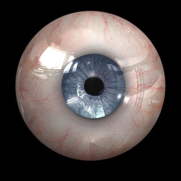 Realistic Eye Texture | 3D stuff | Pinterest | Human eye ...