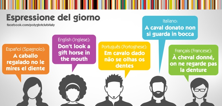 Idiom in 5 languages: Don't look a gift horse in the mouth
