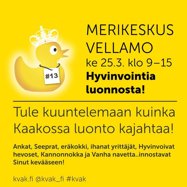 Merikeskus Vellamo, ke 25.3.2015. #Hyvinvointialuonnosta! #kvak #Merikeskusvellamo #kotka
