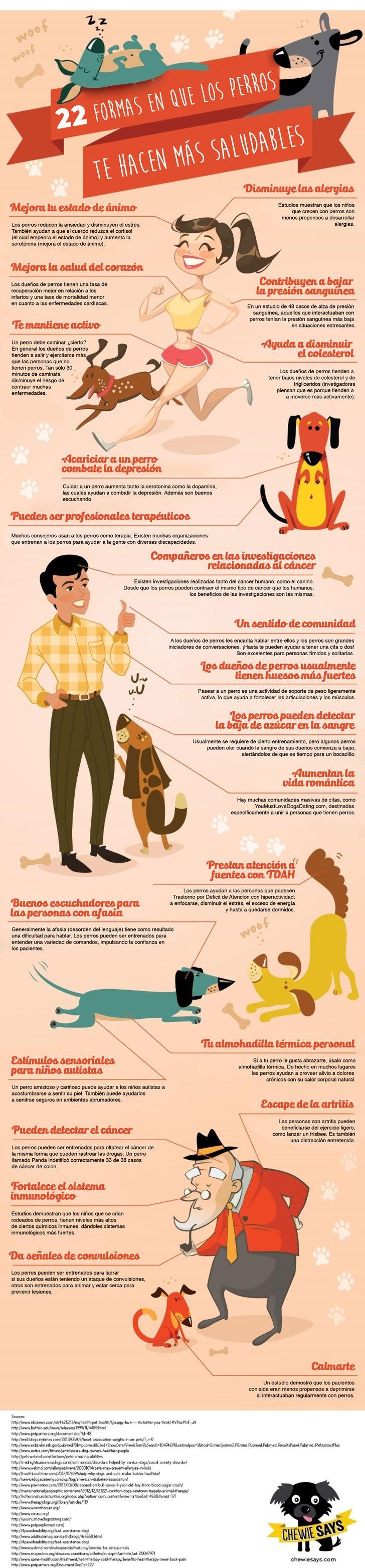 22 formas en que los perros te hacen más saludable - http://www.upsocl.com/verde/no-solo-es-tu-mejor-amigo-tu-perro-tambien-trae-diversos-beneficios-a-tu-salud-2/