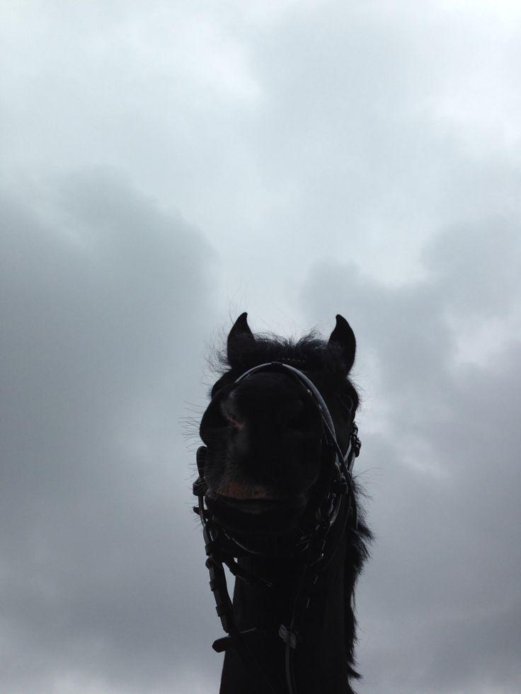 soms zit ik met mijn hoofd in de wolken