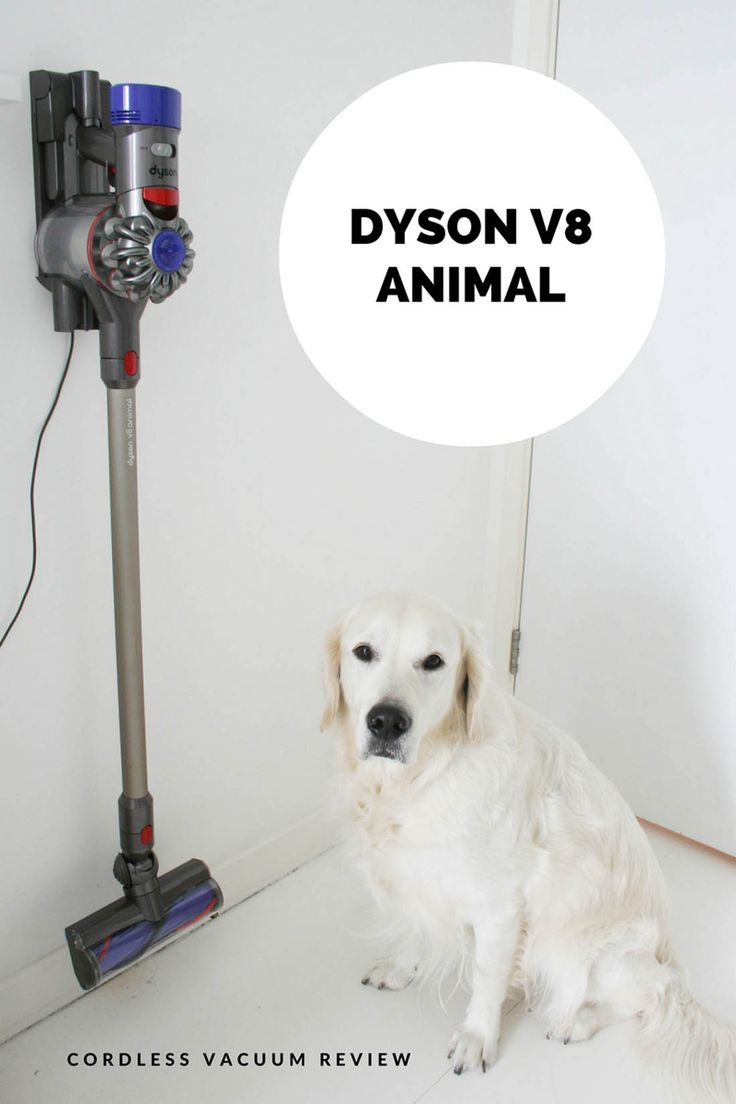 Best 25+ Cordless vacuum reviews ideas only on Pinterest | Hoover ...