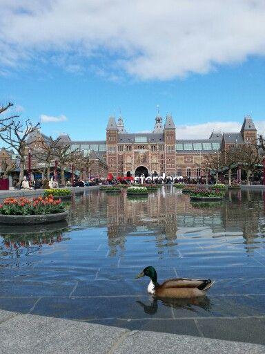 Tulp Festival 1-30 april 2015