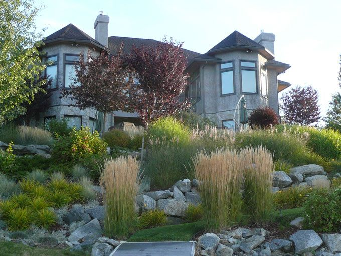 I love this! Very naturalized with boulders, grasses and other low-maintenance plants.