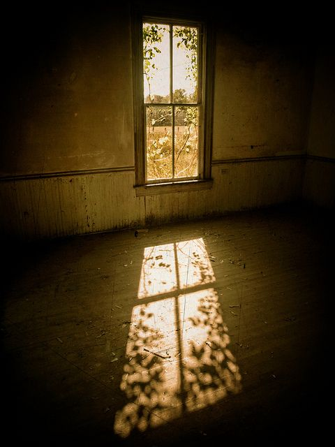 Shadows of Life | Evan Leavitt Photography