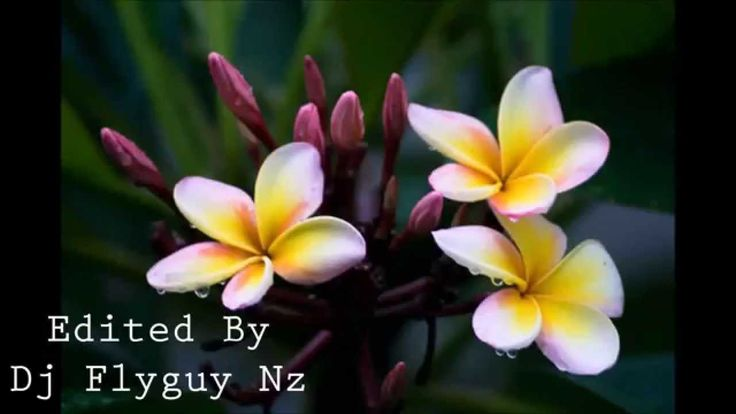 COOK  ISLAND MUSIC ( 3 Songs In One Mix) LOVERS ROCK  2015