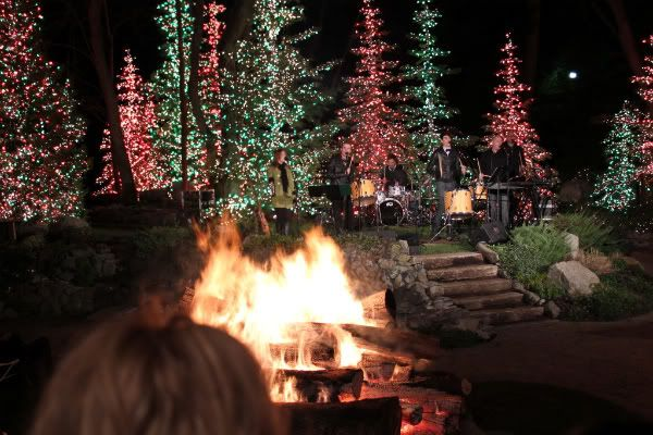1000 images about christmas lights on pinterest outdoor for Christmas decorations clearance online