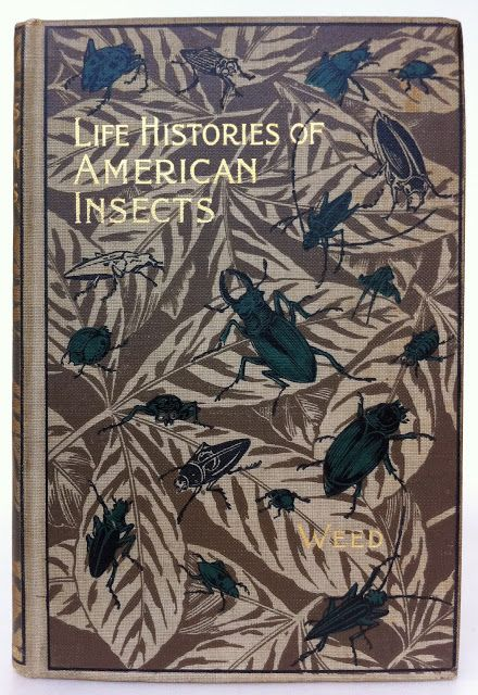 Life Histories of American Insects by Clarence Moores Weed | Beautiful Antique Books