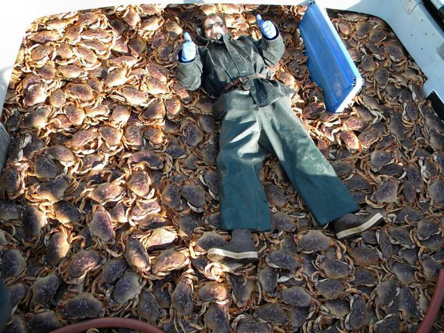 452 best images about fishing on pinterest discovery for Crab fishing oregon