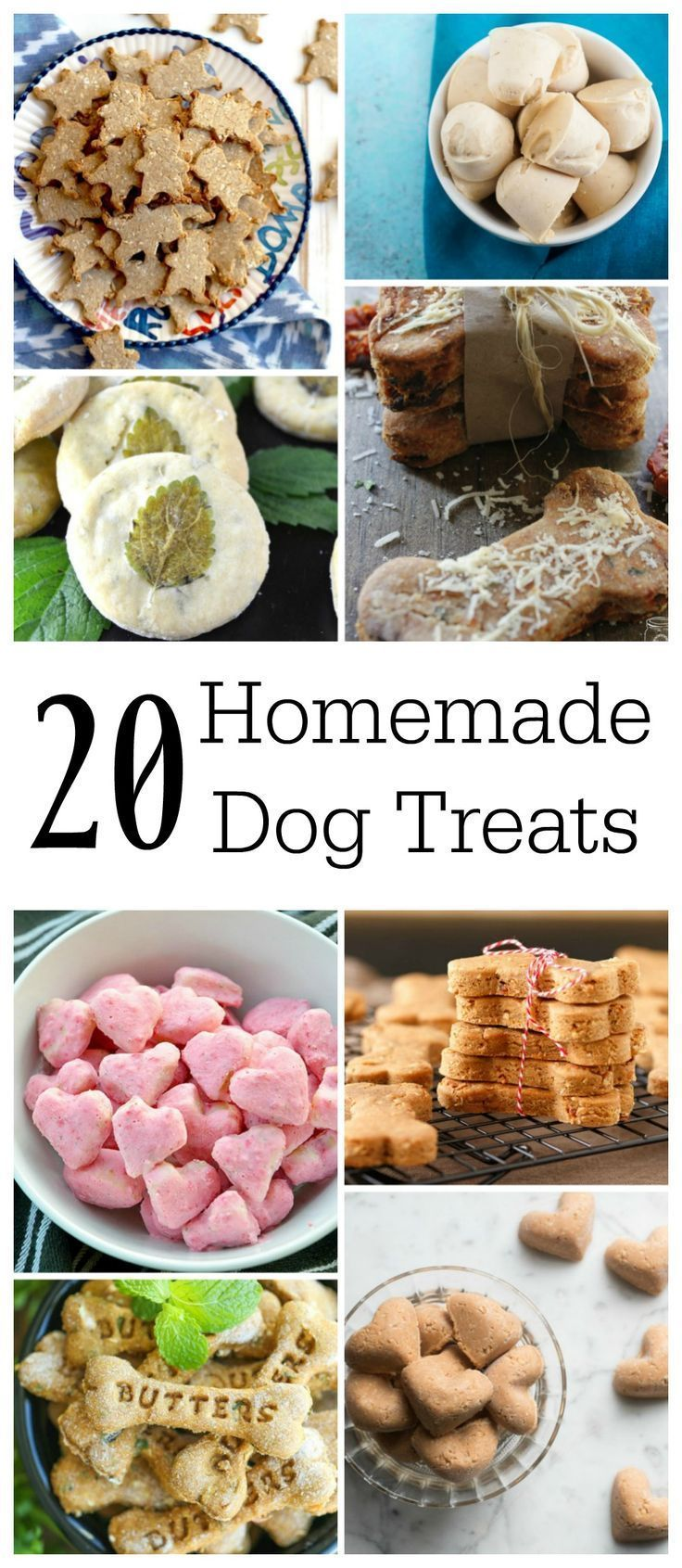 20 Homade Dog Food Recipes 20 homemade dog treats   endlessly inspired in 2020   dog