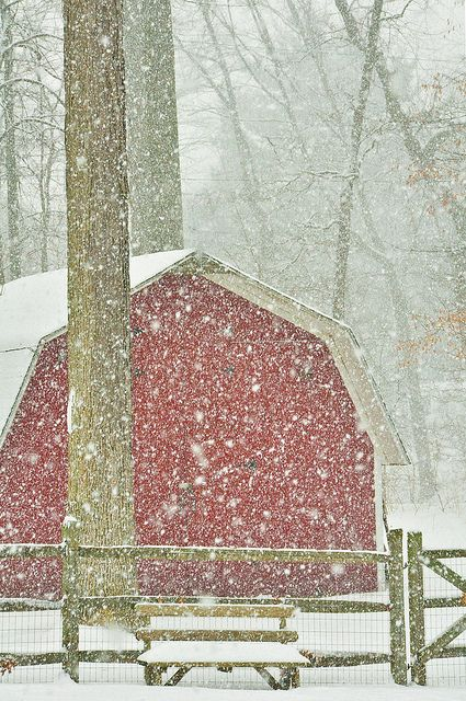 so lovely! nothing like a red barn and some snow ...