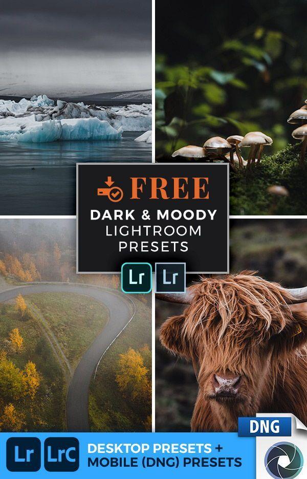 Download Preset Lightroom Android Lrtemplate
