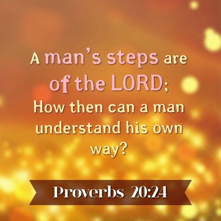 Proverbs 20:24 
