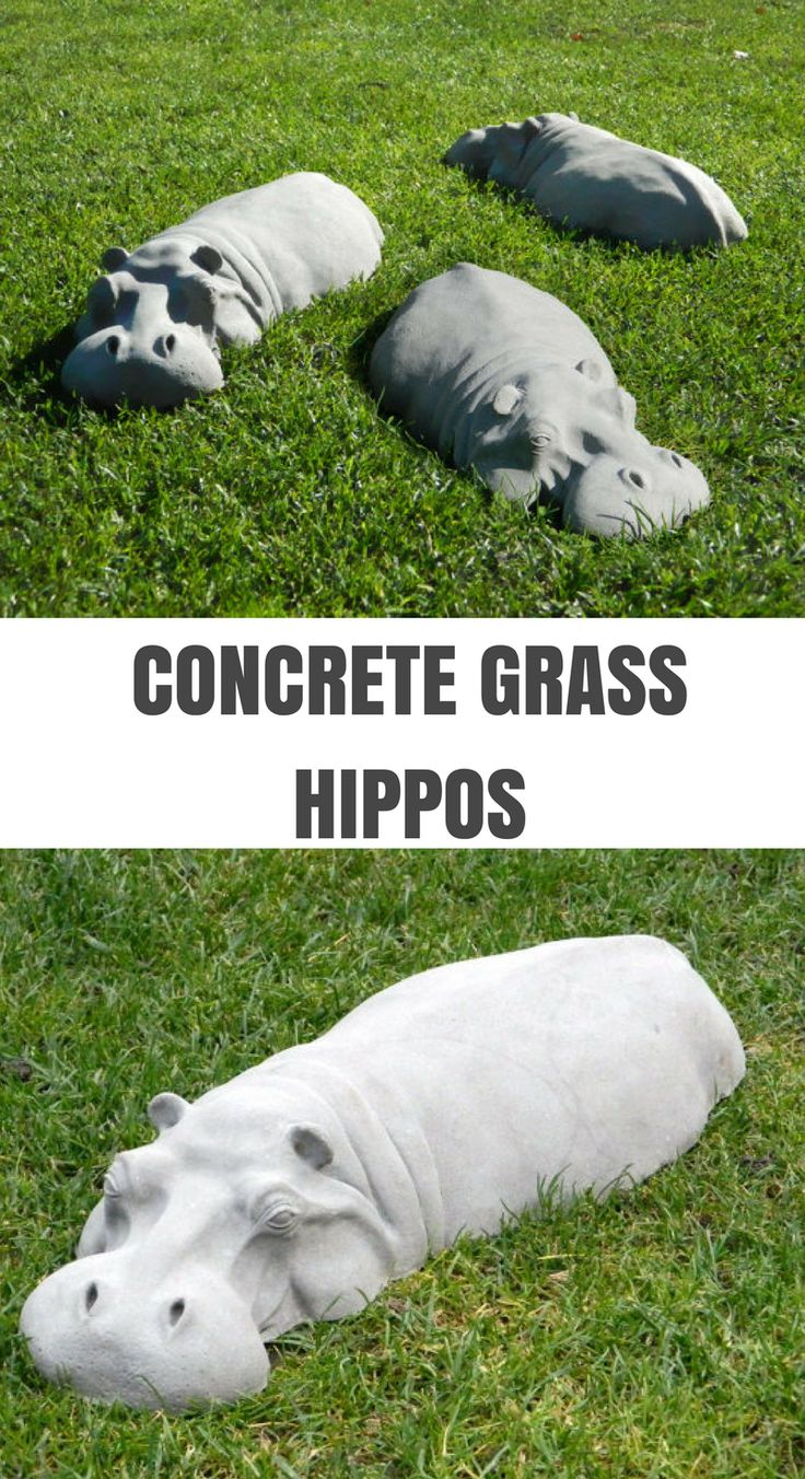 I love these concrete garden hippos. They are so fun. Children would love them. #commissionlink #concrete #cement #garden $hippo #gardendecor #sculpture #animal