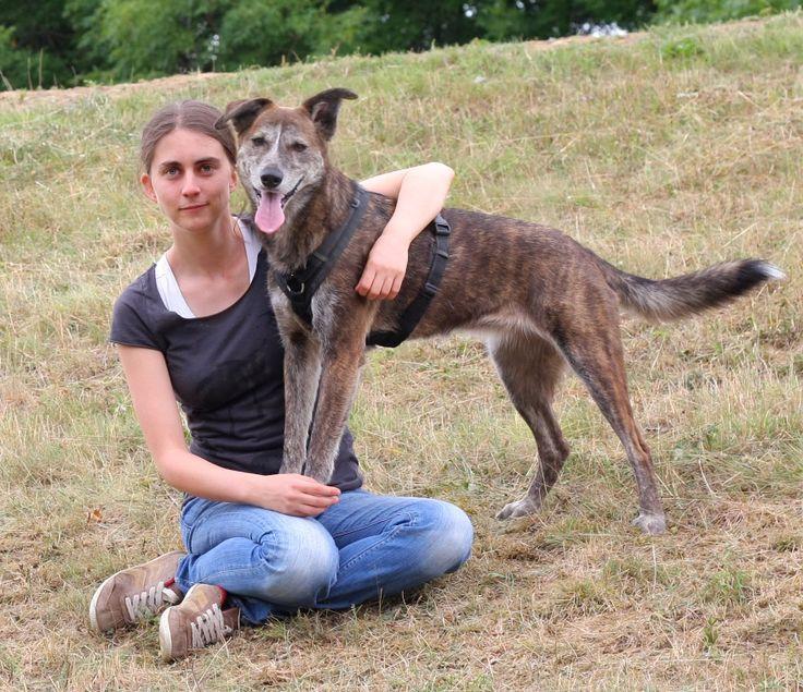 Hundetherapie Heufelder, das bin ich, Steffi und Feebie mein vierbeiniger Schatten