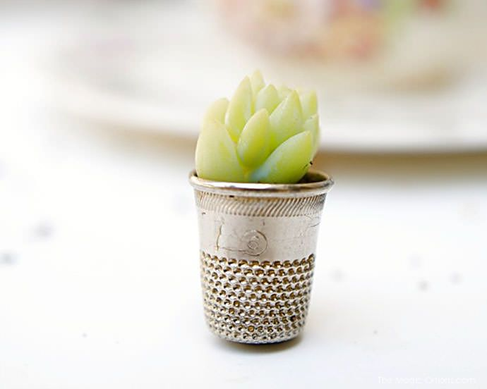 DIY Mini Potted Plant via the magic onions This would be even more adorable covered with a little glass dome :)