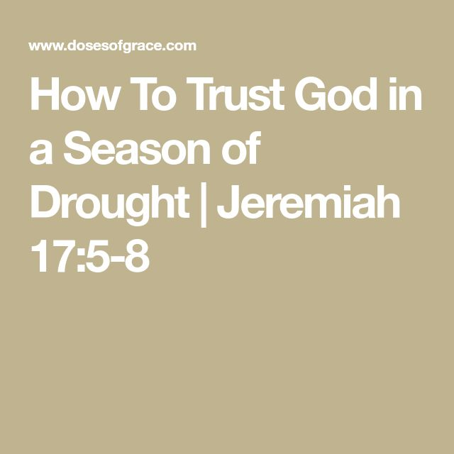 How To Trust God in a Season of Drought | Jeremiah 17:5-8
