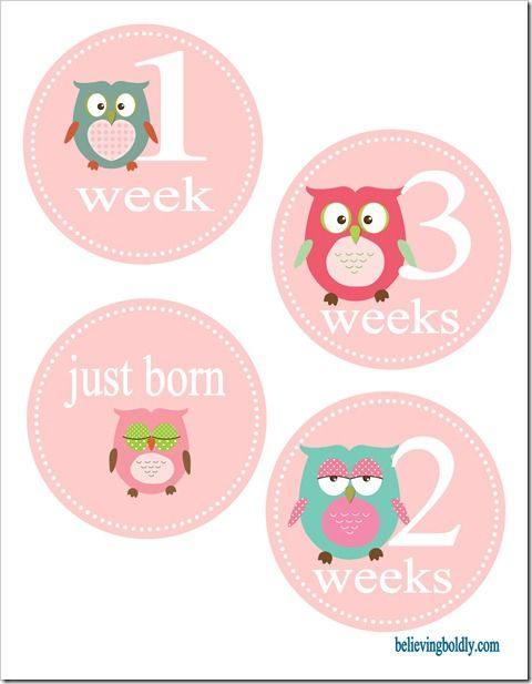 Even more awesome than I was hoping for when I did the google search!! Week and month onesie stickers with owls!! (Free printable)