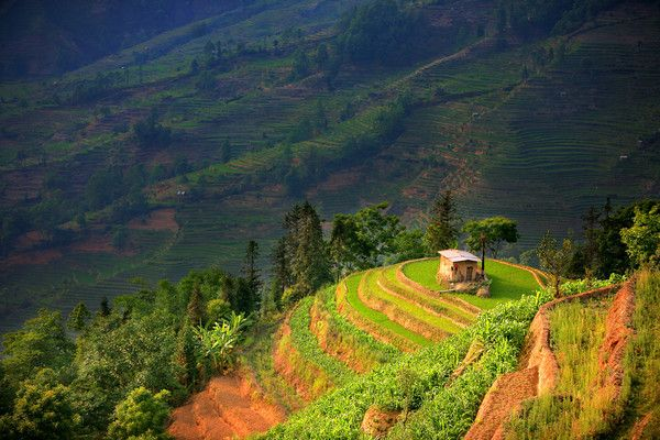 Images of Yunnan Province in China. A small house sits in the vast rice terraces of Yuanyang in southern Yunnan in China. #Yuanyang #Agriculture #China #Travel