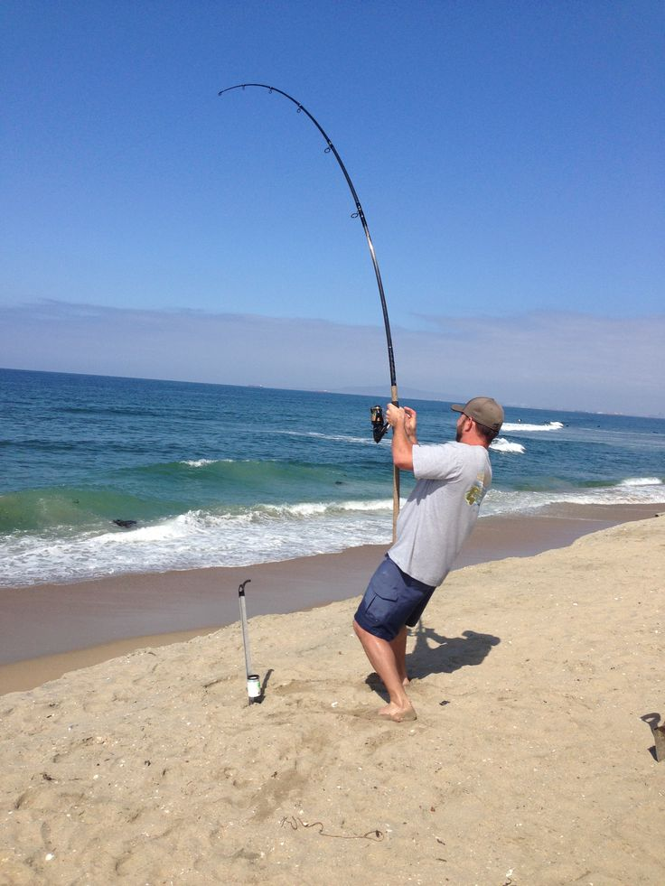 30 best california best surf fishing spots images on for Best fishing spots in california