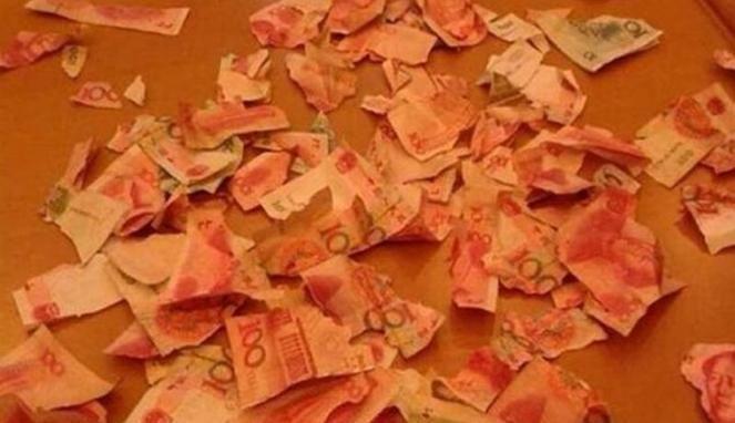 Sendirian di Rumah, Bocah 5 Tahun Merobek Uang Senilai Rp 96 Juta