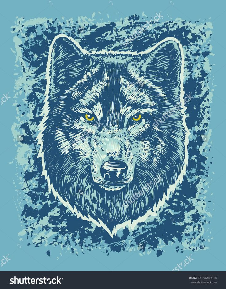 Wolf vector hand draw illustration. T-shirt illustration. Poster illustration. Sticker illustration. Blue background.