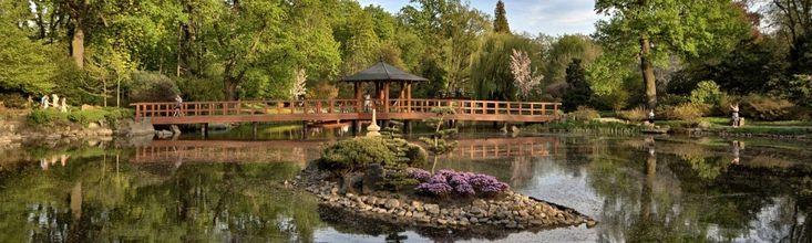 Ogród w stylu japońskim we Wrocławiu