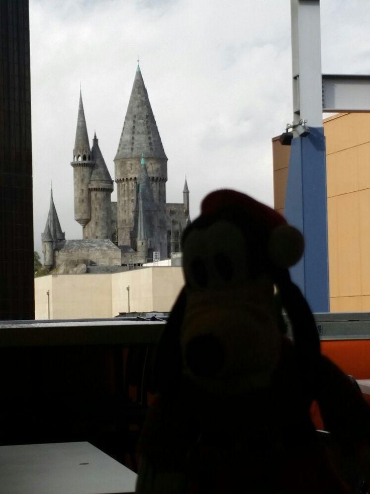Goofy went to Hogwarts