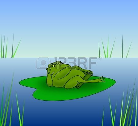 A grumpy frog lying on a water lily leaf. Stock Photo