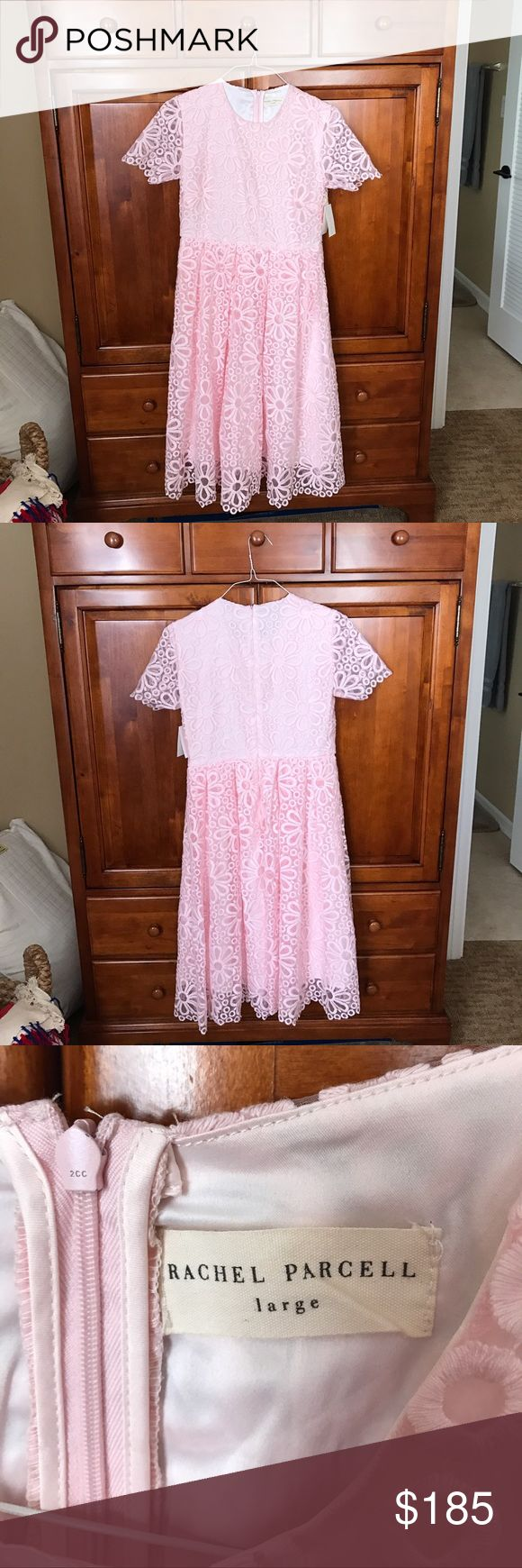 Rachel Parcell dress It is very modest. It's light pink, hits slightly below the knees. It has a lace overlay and is perfect for spring time. Rachel Parcell Dresses