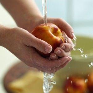 Prevención:  se basa en medidas de control en todas las etapas de la cadena alimentaria, desde la producción en el establecimiento agropecuario hasta la elaboración, manufactura y preparación de los alimentos tanto comercialmente como en los hogares.
