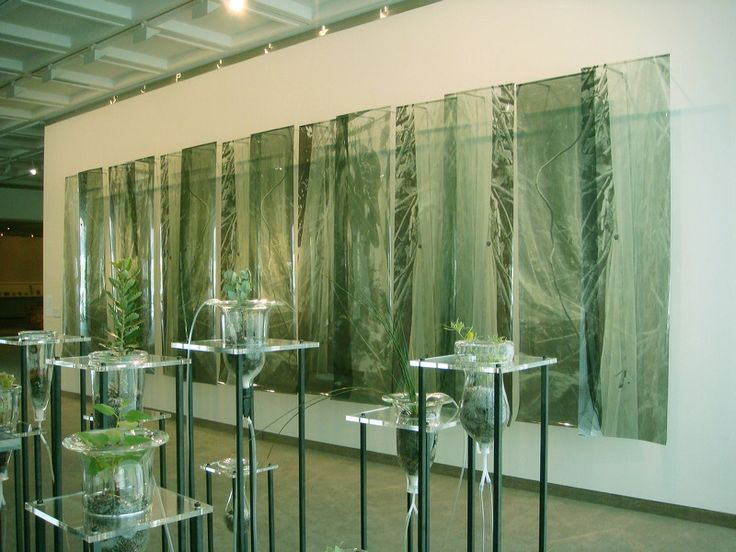 Janet Laurence  | 2007, Lawrence Wilson Gallery, University of Western Australia