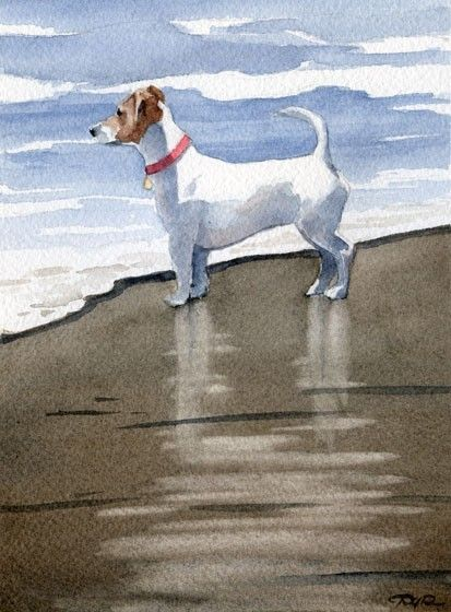 JACK RUSSELL TERRIER Watercolor Art Print Signed by k9artgallery   WATERCOLOR