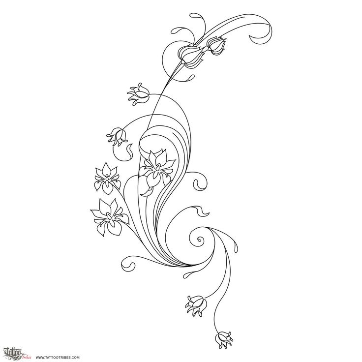 TATTOO TRIBES - Dai forma ai tuoi sogni, Tatuaggi e loro significato - fiori, art nouveau, magnolia, iris, primula, bellezza, amore, passione