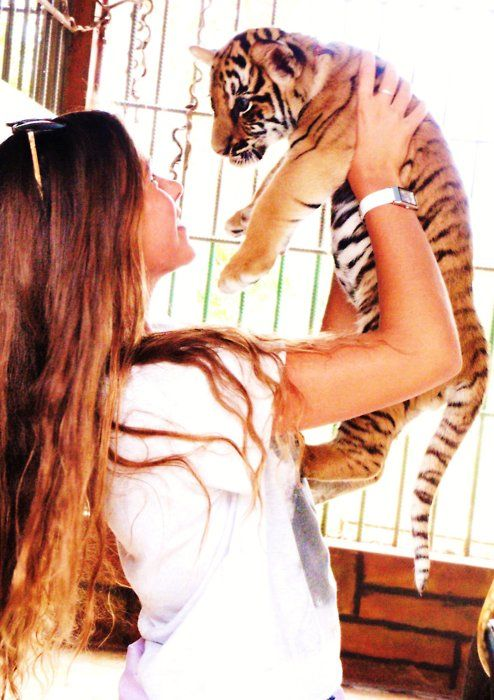 I keep asking Erik for a baby tiger. He always say no. This girl looks happy... he must not want me to be happy