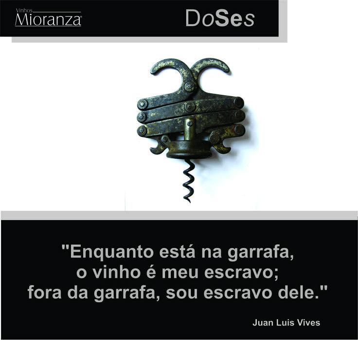 #quotes #frases #vinho #vinhosmioranza #mioranza