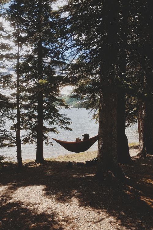What a pretty spot for your hammock!