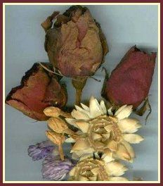 Use dustless cat litter and your microwave to quickly dry garden flowers for use in dried floral arrangements.