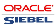 Experience with requirements gathering, design and implementation of Siebel based CRM systems.
