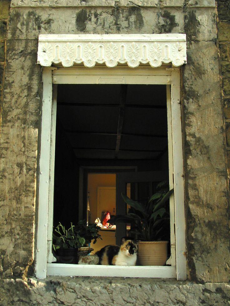 Lambrequin de fenêtre, Valence (Drôme)