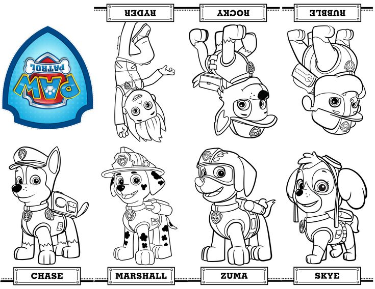 free printable mini paw patrol coloring book from a single sheet of paper patrulha canina pinterest paw patrol coloring books and free printable