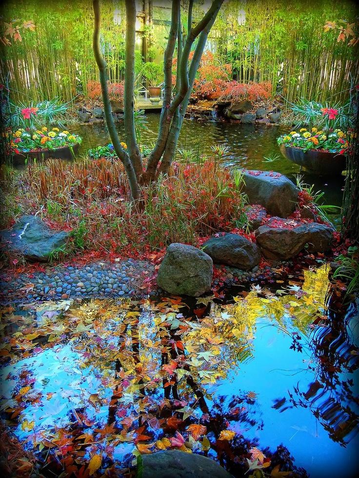 dinah garden hotel. Mid Winter At Dinah\u0027s Garden Hotel Tree In BEAUTIFUL GARDEN | Random Stuff That Catches My Eye Pinterest Gardens, Spaces And Beautiful Places Dinah