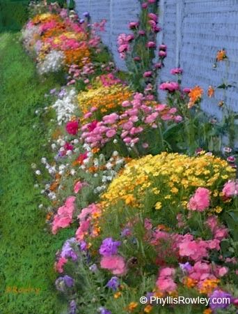 Exactly what I was thinking of for the fence line- wildflower look (& maintenance hopefully!)
