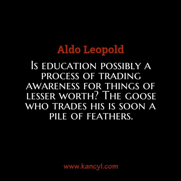 """""""Is education possibly a process of trading awareness for things of lesser worth? The goose who trades his is soon a pile of feathers."""", Aldo Leopold"""