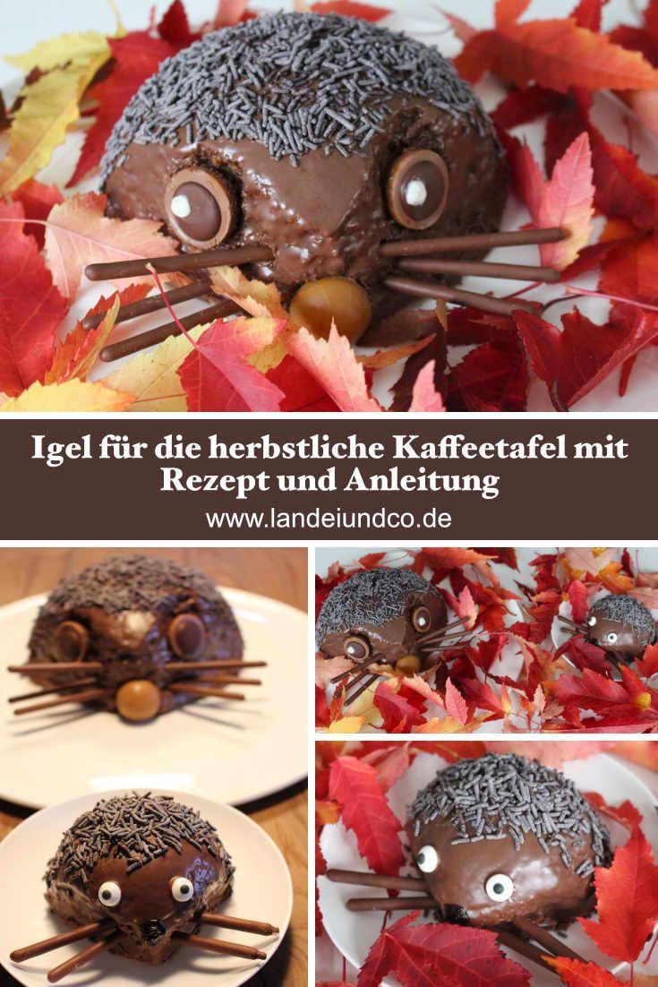 Herbstrezept: Möhrenkuchen mit Schokoladenüberzug, Igel, Klassisches und Thermomixrezept, Kindergeburtstag, Mottoparty