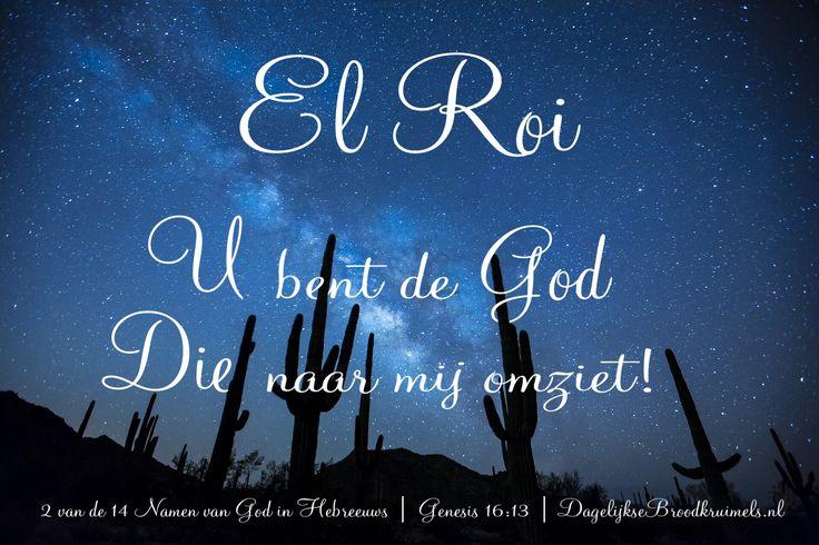 En zij gaf de HEERE, Die tot haar sprak, de naam: U bent de God Die naar mij omziet! Want zij zei: Heb ik hier dan Hem gezien Die naar mij omgezien heeft? Genesis 16:13 #Heere, #GodsBescherming, #GodsVoorzienigheid https://www.dagelijksebroodkruimels.nl/genesis-16-13/