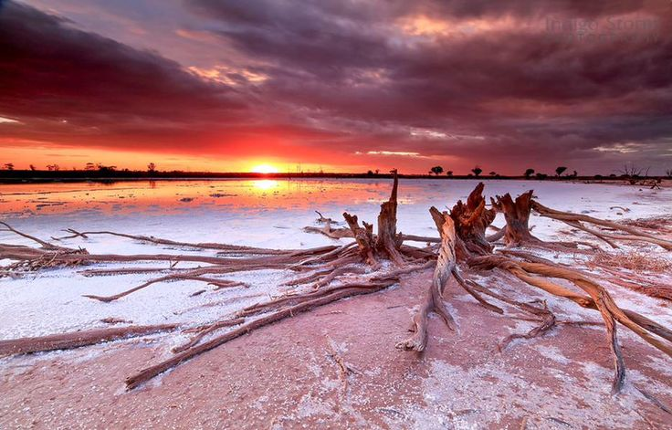 Sunset on a beautiful warm night in the Golden Outback. Photo by: Kylie Gee
