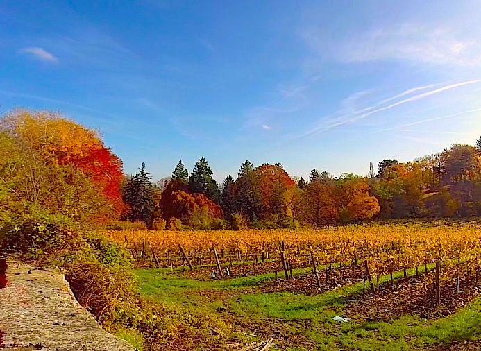 Weingut am Reisenberg